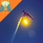 Firefly ★